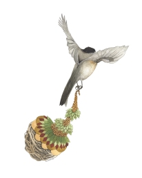 Quilted Bundles: Bird III