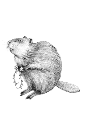 Quilted Critters: The Beaver